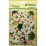 Petaloo - Vintage Velvet Dogwood - Ivory