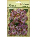 Petaloo - Vintage Velvet Dogwood - Lavender