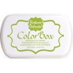 Clearsnap - ColorBox Premium Dye Ink by Stephanie Barnard - Kiwi