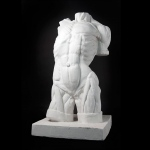 Natural Pigments Drawing Plaster Cast Male Torso (Lifesize)