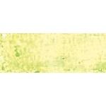 Royal Talens van Gogh® Oil Pastel Greenish Yellow 243.9; Color: Green, Orange; Format: Stick; Type: Oil; (model 95862439), price per box
