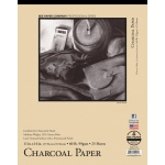 "Bee Paper® Charcoal Paper Pad 11"" x 14""; Binding: Tape Bound; Color: White/Ivory; Format: Pad; Quantity: 25 Sheets; Size: 11"" x 14""; Type: Charcoal; Weight: 60 lb; (model B1021T25-1114), price per 25 Sheets pad"