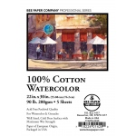 "Bee Paper® 100% Cotton Watercolor Sheets 22"" x 30"" 90lb; Format: Sheet; Quantity: 5 Sheets; Size: 22"" x 30""; Type: Watercolor; Weight: 90 lb; (model B1152P5-2230), price per 5 Sheets"