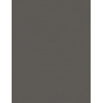 "My Colors Canvas 80 lb. Textured Cardstock Cloak Gray 8.5 x 11; Color: Black/Gray; Format: Sheet; Quantity: 25 Sheets; Size: 8 1/2"" x 11""; Texture: Canvas; Weight: 80 lb; (model E05101016), price per 25 Sheets"