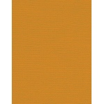 "My Colors Canvas 80 lb. Textured Cardstock Goldenrod 8.5 x 11; Color: Yellow; Format: Sheet; Quantity: 25 Sheets; Size: 8 1/2"" x 11""; Texture: Canvas; Weight: 80 lb; (model E054411), price per 25 Sheets"