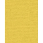 "My Colors Canvas 80 lb. Textured Cardstock Banna Pepper 8.5 x 11; Color: Yellow; Format: Sheet; Quantity: 25 Sheets; Size: 8 1/2"" x 11""; Texture: Canvas; Weight: 80 lb; (model E054414), price per 25 Sheets"