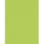 "My Colors Canvas 80 lb. Textured Cardstock Limelight 8.5 x 11; Color: Green; Format: Sheet; Quantity: 25 Sheets; Size: 8 1/2"" x 11""; Texture: Canvas; Weight: 80 lb; (model E055515), price per 25 Sheets"