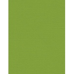 "My Colors Canvas 80 lb. Textured Cardstock Mint Julep 8.5 x 11; Color: Green; Format: Sheet; Quantity: 25 Sheets; Size: 8 1/2"" x 11""; Texture: Canvas; Weight: 80 lb; (model E055516), price per 25 Sheets"