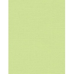 "My Colors Canvas 80 lb. Textured Cardstock Lime Pop 8.5 x 11; Color: Green; Format: Sheet; Quantity: 25 Sheets; Size: 8 1/2"" x 11""; Texture: Canvas; Weight: 80 lb; (model E055517), price per 25 Sheets"