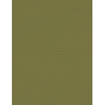"My Colors Canvas 80 lb. Textured Cardstock Grasshopper 8.5 x 11; Color: Green; Format: Sheet; Quantity: 25 Sheets; Size: 8 1/2"" x 11""; Texture: Canvas; Weight: 80 lb; (model E055518), price per 25 Sheets"