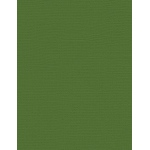 "My Colors Canvas 80 lb. Textured Cardstock Desert Cactus 8.5 x 11; Color: Green; Format: Sheet; Quantity: 25 Sheets; Size: 8 1/2"" x 11""; Texture: Canvas; Weight: 80 lb; (model E055520), price per 25 Sheets"