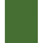 "My Colors Canvas 80 lb. Textured Cardstock Parrot 8.5 x 11; Color: Green; Format: Sheet; Quantity: 25 Sheets; Size: 8 1/2"" x 11""; Texture: Canvas; Weight: 80 lb; (model E055521), price per 25 Sheets"