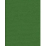 "My Colors Canvas 80 lb. Textured Cardstock Pine Forest 8.5 x 11; Color: Green; Format: Sheet; Quantity: 25 Sheets; Size: 8 1/2"" x 11""; Texture: Canvas; Weight: 80 lb; (model E055523), price per 25 Sheets"