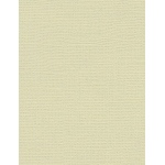 "My Colors Canvas 80 lb. Textured Cardstock Muslin 8.5 x 11: Brown, Sheet, 25 Sheets, 8 1/2"" x 11"", Canvas, 80 lb, (model E058808), price per 25 Sheets"