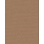 "My Colors Canvas 80 lb. Textured Cardstock Chamois 8.5 x 11: Brown, Sheet, 25 Sheets, 8 1/2"" x 11"", Canvas, 80 lb, (model E058810), price per 25 Sheets"