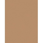 """My Colors Canvas 80 lb. Textured Cardstock Sand Beach 8.5 x 11; Color: Brown; Format: Sheet; Quantity: 25 Sheets; Size: 8 1/2"""" x 11""""; Texture: Canvas; Weight: 80 lb; (model E058811), price per 25 Sheets"""