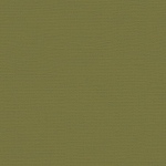 "My Colors Canvas 80 lb. Textured Cardstock Grasshopper 12 x 12; Color: Green; Format: Sheet; Quantity: 25 Sheets; Size: 12"" x 12""; Texture: Canvas; Weight: 80 lb; (model T055518), price per 25 Sheets"
