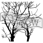 The Crafters Workshop - Stencil - Branches Reversed - 12x12