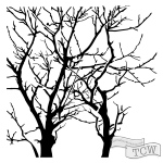 The Crafters Workshop - Stencil - Branches Reversed - 6x6