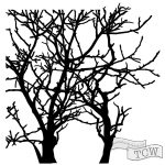 The Crafters Workshop - Stencil - Branches - 6x6
