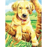 "Reeves™ Medium Colored Pencil By Numbers Labrador: Multi, 9"" x 12"", (model PPCN18), price per each"