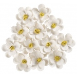 "White; Color: White/Ivory; Material: Paper; Size: 1 1/4"" - 1 1/2""; Type: Dimensional; (model BHS107530), price per box"