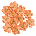 "Peach; Color: Red/Pink; Material: Paper; Size: 1 1/4"" - 1 1/2""; Type: Dimensional; (model BHS107532), price per box"