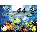 "Royal & Langnickel® Painting by Numbers™ 11 1/4 x 15 3/8 Junior Large Set Dolphins; Board Size: 11 1/4"" x 15 3/8""; (model PJL10), price per set"