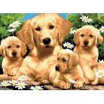 "Royal & Langnickel® Painting by Numbers™ 11 1/4 x 15 3/8 Junior Large Set Golden Retriever; Board Size: 11 1/4"" x 15 3/8""; (model PJL12), price per set"