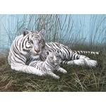 "Royal & Langnickel® Painting by Numbers™ 11 1/4 x 15 3/8 Junior Large Set White Tigers: 11 1/4"" x 15 3/8"", (model PJL22), price per set"