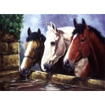 "Royal & Langnickel® Painting by Numbers™ 11 1/4 x 15 3/8 Junior Large Set Three Of Kind; Board Size: 11 1/4"" x 15 3/8""; (model PJL23), price per set"