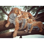 "Royal & Langnickel® Painting by Numbers™ 11 1/4 x 15 3/8 Junior Large Set African Leopard & Cubs; Board Size: 11 1/4"" x 15 3/8""; (model PJL24), price per set"