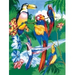 "Royal & Langnickel® Painting by Numbers™ 8 3/4 x 11 3/8 Junior Small Set Tropical Bird; Board Size: 8 3/4"" x 11 3/8""; (model PJS15), price per set"