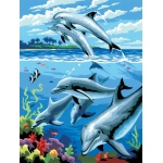 "Royal & Langnickel® Painting by Numbers™ 8 3/4 x 11 3/8 Junior Small Set Dolphins: 8 3/4"" x 11 3/8"", (model PJS24), price per set"