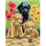 "Royal & Langnickel® Painting by Numbers™ 8 3/4 x 11 3/8 Junior Small Set Labrador Pups: 8 3/4"" x 11 3/8"", (model PJS30), price per set"