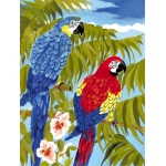 """Royal & Langnickel® Painting by Numbers™ 8 3/4 x 11 3/8 Junior Small Set Parrots: 8 3/4"""" x 11 3/8"""", (model PJS35), price per set"""