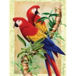 "Royal & Langnickel® Painting by Numbers™ 8 3/4 x 11 3/8 Junior Small Set Bamboo Parrot; Board Size: 8 3/4"" x 11 3/8""; (model PJS38), price per set"