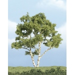 "Woodland Scenics® 4"" Premium Trees Birch Tree: 4"", Tree, (model WSTR1601), price per each"