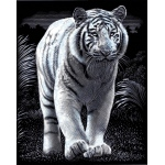 "Reeves™ Scraperfoil™ Scraperfoil White Tiger; Color: Metallic; Size: 8"" x 10""; (model PPSF40), price per each"