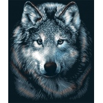 "Reeves™ Scraperfoil™ Scraperfoil Wolves: Metallic, 8"" x 10"", (model PPSF27), price per each"