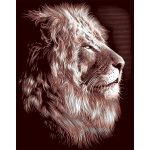 "Reeves™ Scraperfoil™ Gold Foil Lion; Color: Multi; Size: 8"" x 10""; (model PPCF30), price per each"