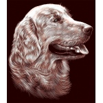 "Reeves™ Scraperfoil™ Gold Foil Retriever Portrait; Color: Multi; Size: 8"" x 10""; (model PPCF39), price per each"