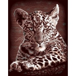 "Reeves™ Scraperfoil™ Gold Foil Leopard Cubs; Color: Multi; Size: 8"" x 10""; (model PPCF25), price per each"