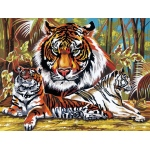 "Reeves™ Large Acrylic Painting By Numbers Set Tigers; Size: 12"" x 15 1/2""; (model PL43), price per each"