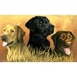 "Reeves™ Large Painting By Numbers Labs in Marsh; Size: 12"" x 16""; (model PBNACL2), price per each"