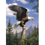 "Reeves™ Medium Painting By Numbers Screaming Eagle; Size: 9"" x 12""; (model PBNACM3), price per each"